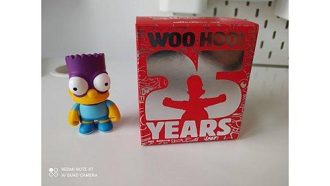 THE SIMPSONS 25 YEARS - Bartman